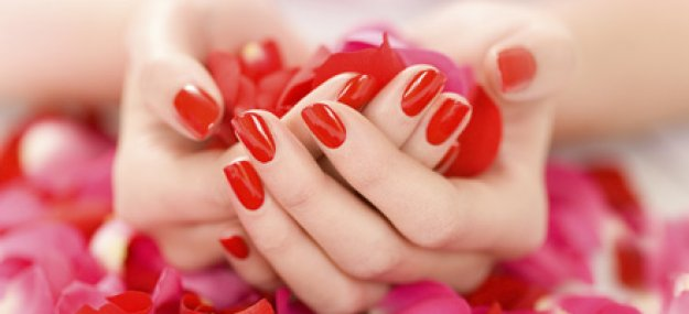�������: ��������� ����� �������! ������ 77% �� ������� � ������� � ��������� Shellac � ����� ������� Red (966 ���. ������ 4200 ���.)